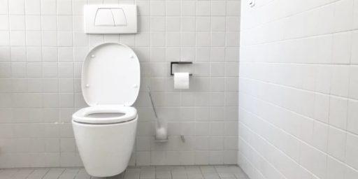 los mejores trucos para acabar con el mal olor del baño